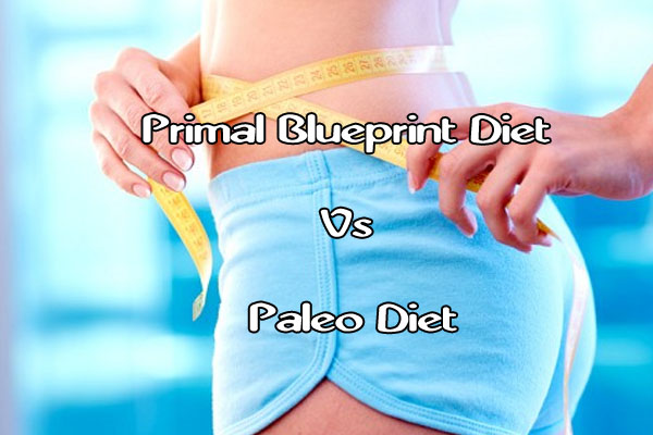Primal blueprint diet vs paleo diet pro paleo diet primal blueprint diet vs paleo diet malvernweather Image collections